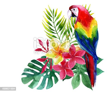 istock Watercolor parrot with exotic flowers and leaves 498601894