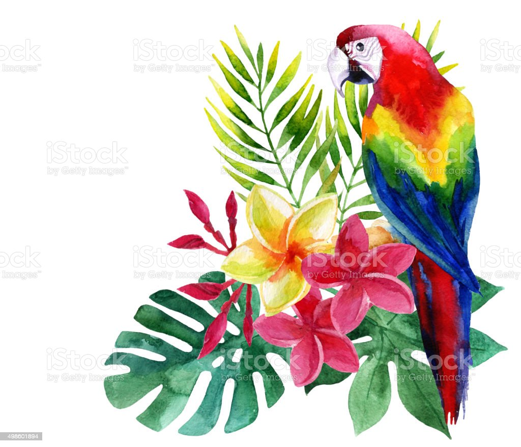 Watercolor parrot with exotic flowers and leaves vector art illustration