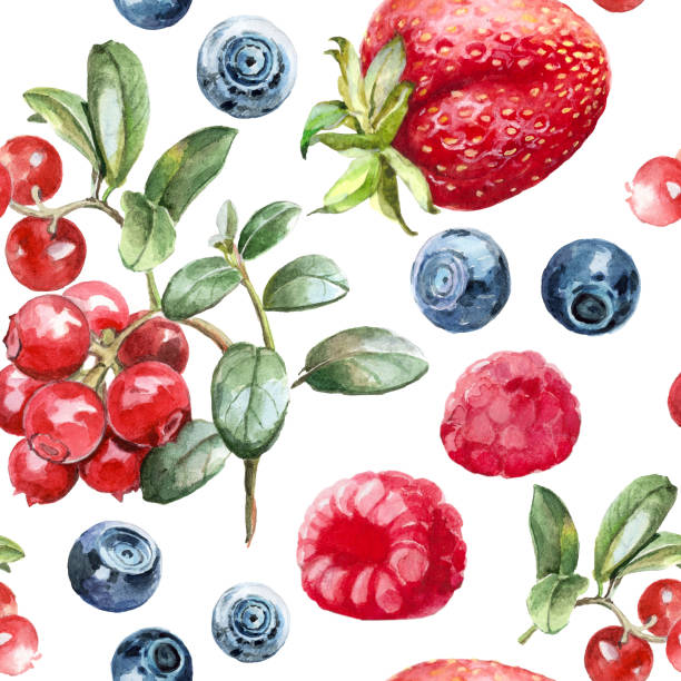 watercolor pattern forest berries vector art illustration