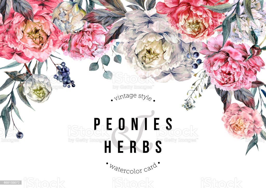 Watercolor Peonies Horizontal Backdrop vector art illustration