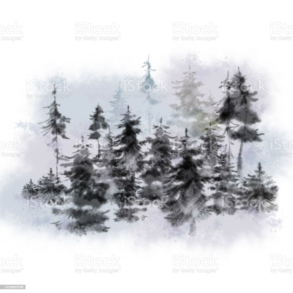 watercolor pine trees in a fog stock illustration download image now istock watercolor pine trees in a fog stock illustration download image now istock