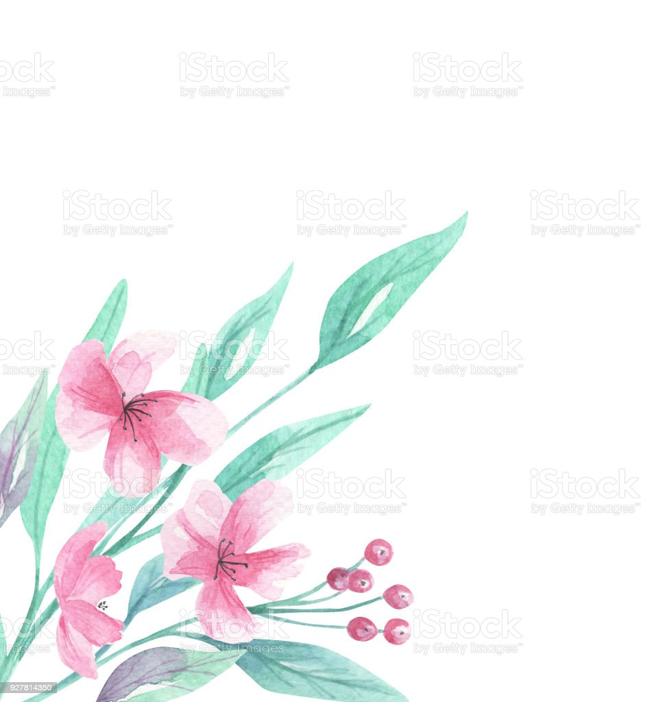 Watercolor Pink Aqua Flowers Floral Blooms Corner Border Royalty Free
