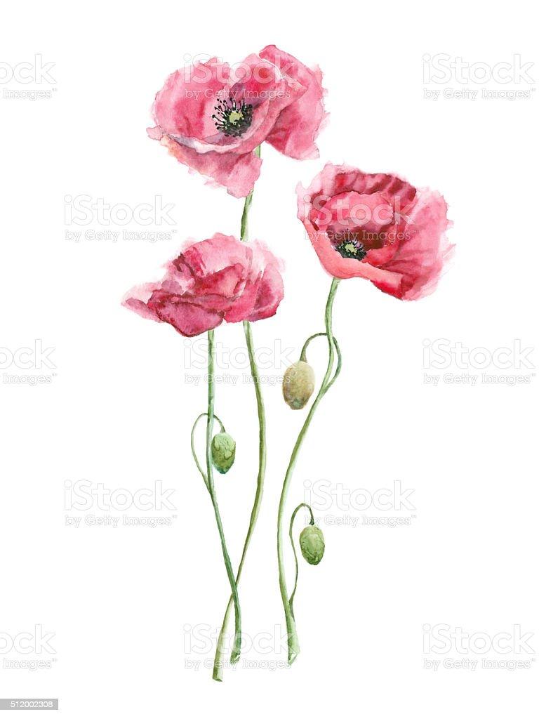 Rose Aquarelle De Fleurs Cliparts Vectoriels Et Plus D Images De
