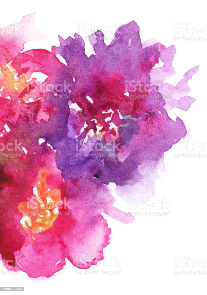 Watercolor pink purple flower floral peony rose carnation composition art illustration texture backdrop background vector art illustration