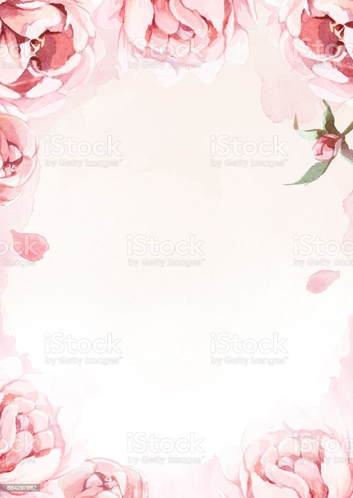 watercolor pink, rose, and red peonies on rose background for greetings card vector art illustration