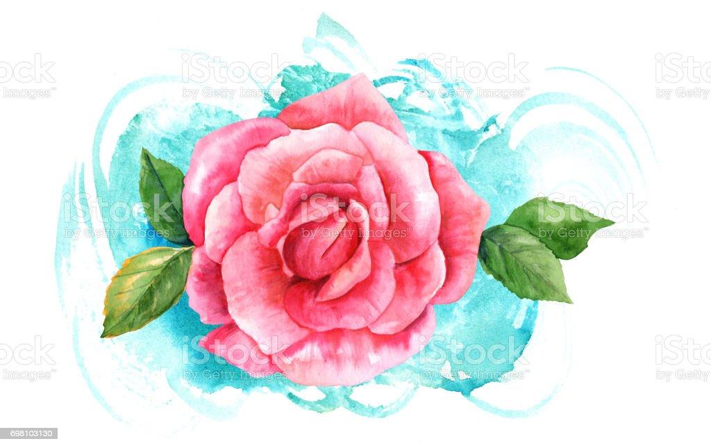 Dessin Rose Rose Aquarelle Sur Trait De Pinceau Turquoise Cliparts