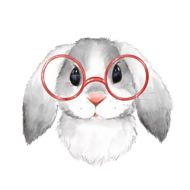 Watercolor portrait cute rabbit with glasses Little bunny with glasses. Cute watercolor illustration rabbit animal stock illustrations