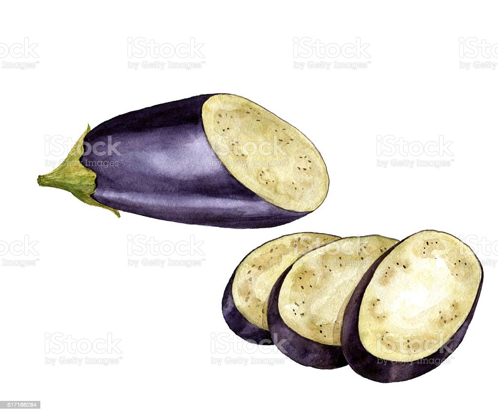 watercolor purple eggplant vector art illustration