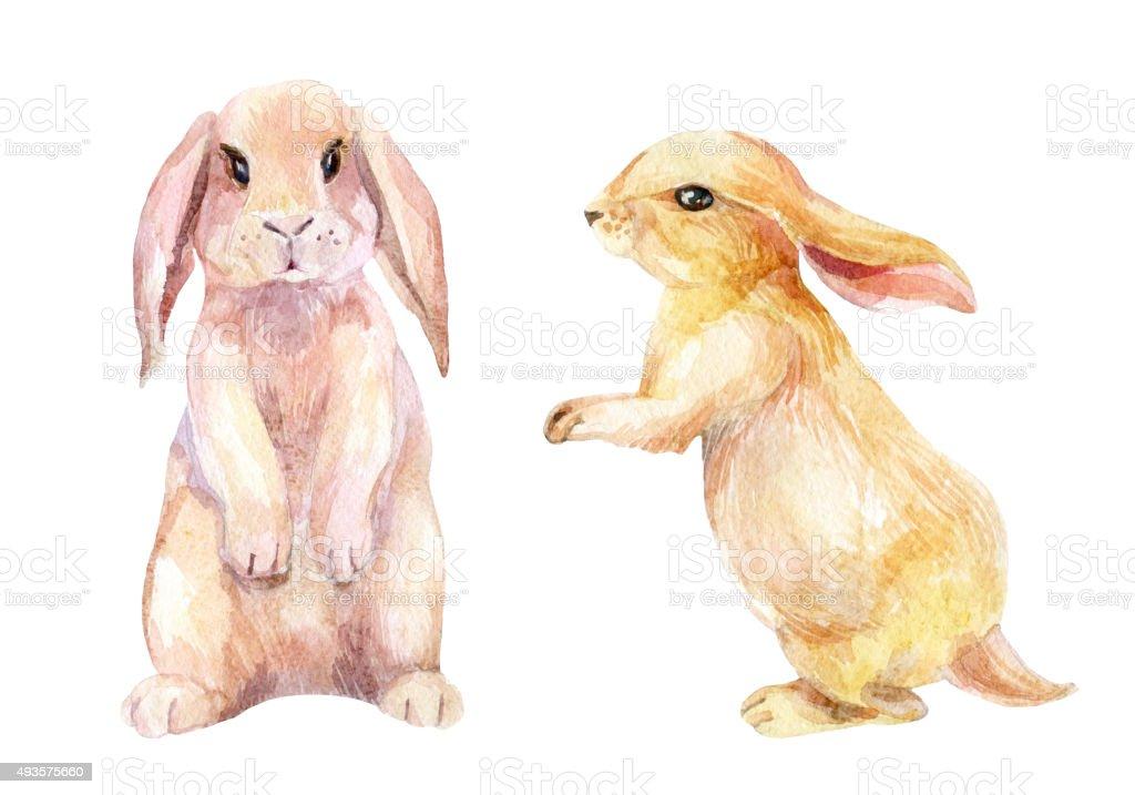 Watercolor rabbit illustration vector art illustration
