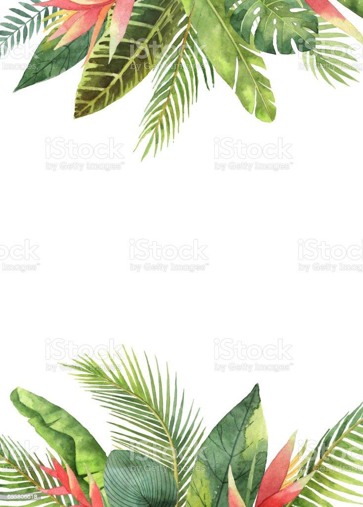 Cadre rectangulaire aquarelle tropical feuilles et branches isolement sur fond blanc. - Illustration vectorielle