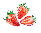 Food background, painted bright composition. Hand drawn food illustration. Fruit print.