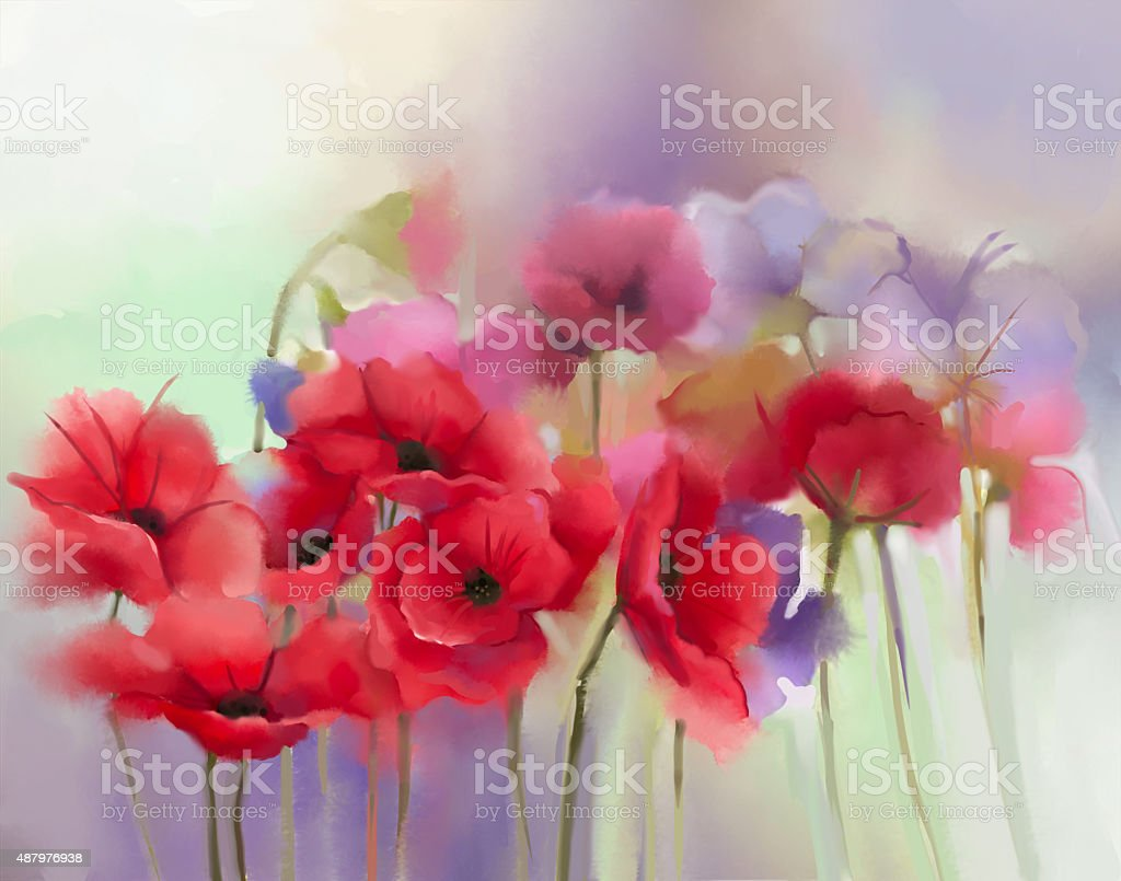 Watercolor red poppy flowers painting vector art illustration