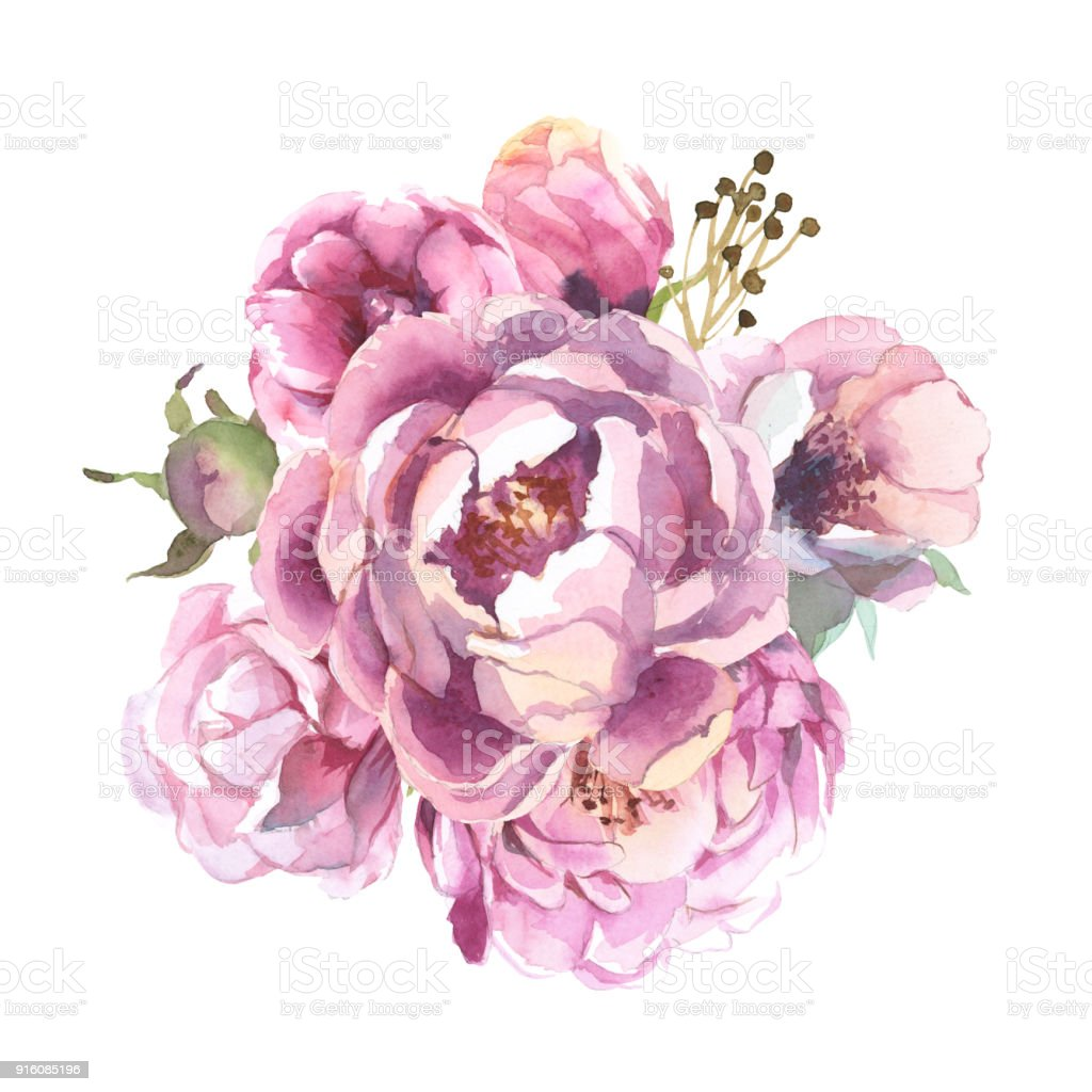 Watercolor romantic bouquet of red flowers isolated on white watercolor romantic bouquet of red flowers isolated on white background peonies for card royalty mightylinksfo