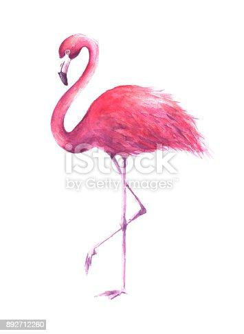 Watercolor rose flamingo
