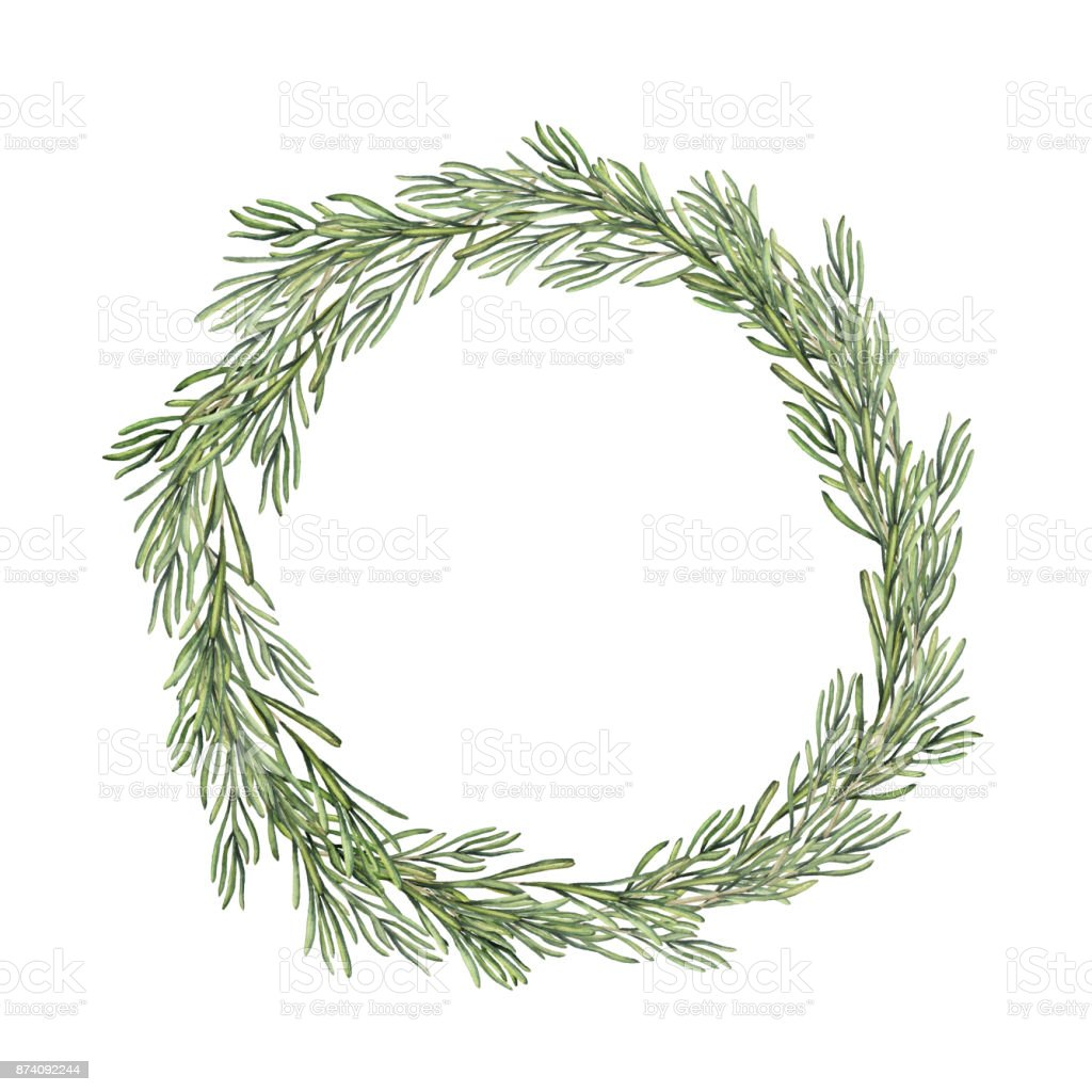 Watercolor rosemary wreath. Hand painted rosemary branch isolated on white background. Floral botanical border for design or print. vector art illustration