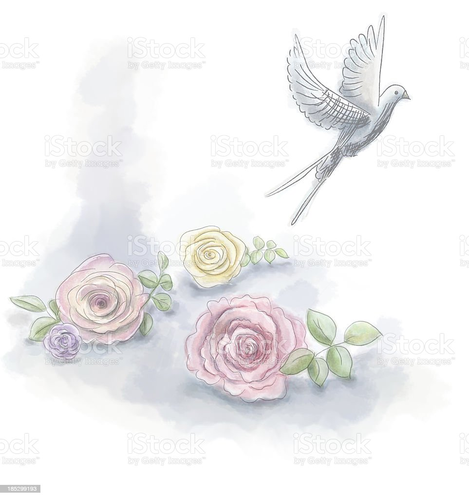 Watercolor roses with dove vector art illustration