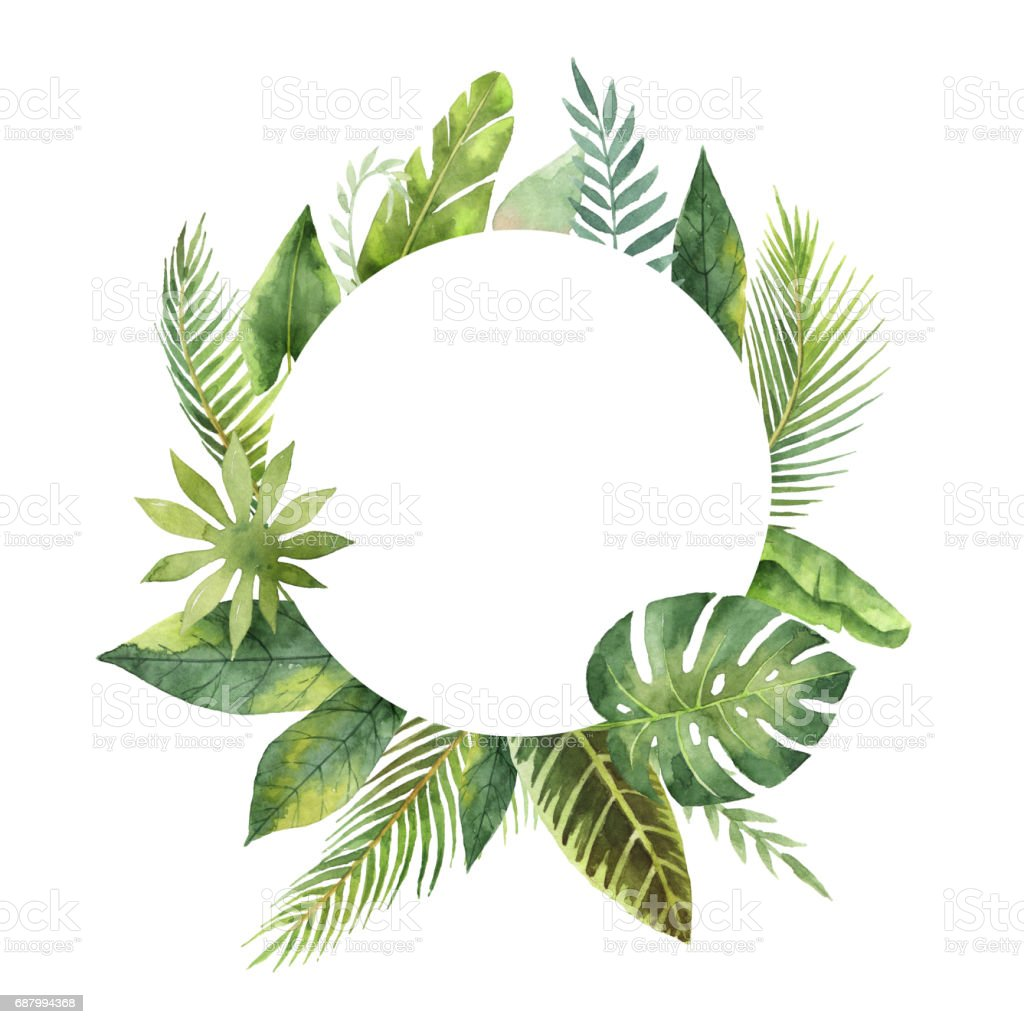 Watercolor round frame tropical leaves and branches isolated on white background. - illustrazione arte vettoriale