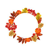 Watercolor round frame with autumn leaves and berries. Background with fall foliage, rowanberries and  place for text. Design for wedding, invitations or cards