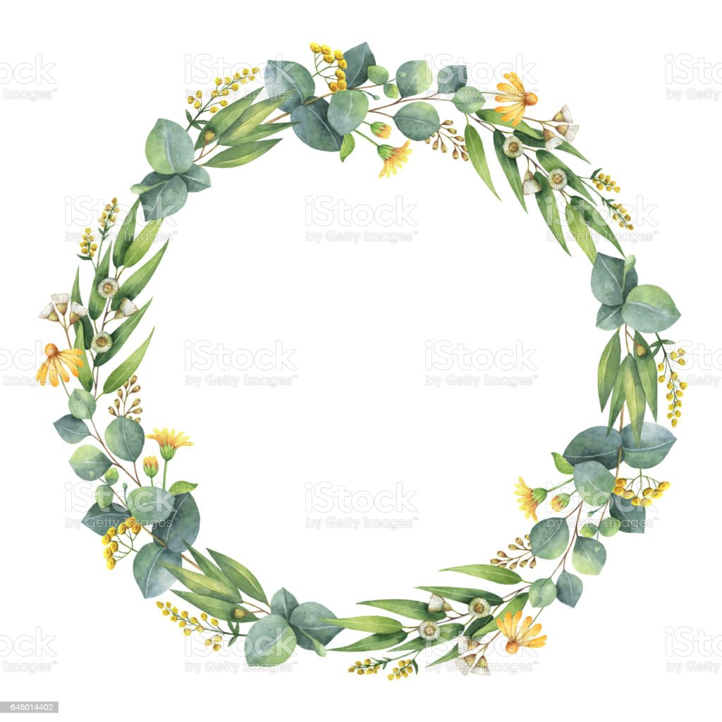 Watercolor round wreath with eucalyptus leaves and branches. vector art illustration