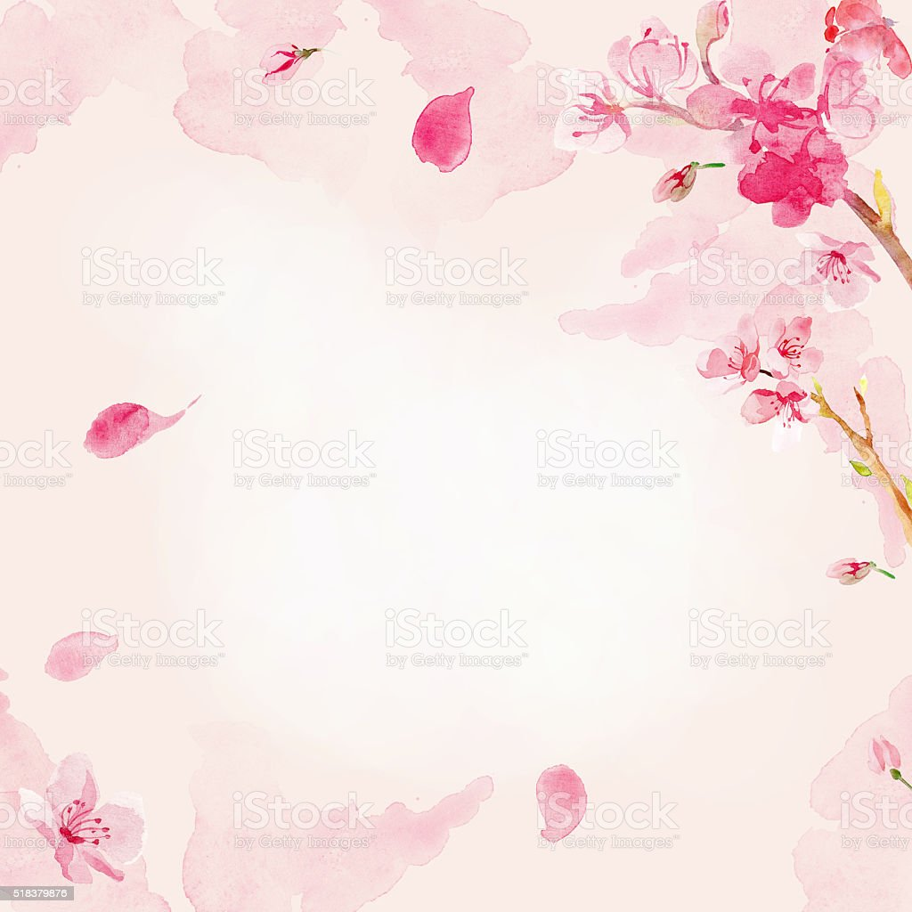 Watercolor sakura flower background vector art illustration