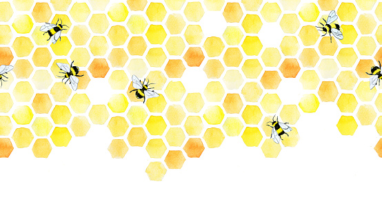 watercolor seamless border, pattern with honeycomb and cute bees. hand drawing, yellow honeycomb, print on the theme of farming, organic products, beekeeping, honey production. web banner