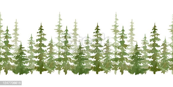 istock Watercolor seamless border with evergreen trees. Forest elements for landscape creator. Isolated spruce, oaks, pines, fir trees. Coniferous green forest 1247706615