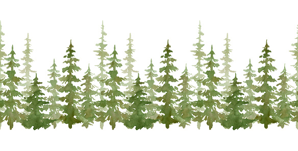 Watercolor seamless border with evergreen trees. Forest elements for landscape creator. Isolated spruce, oaks, pines, fir trees. Coniferous green forest