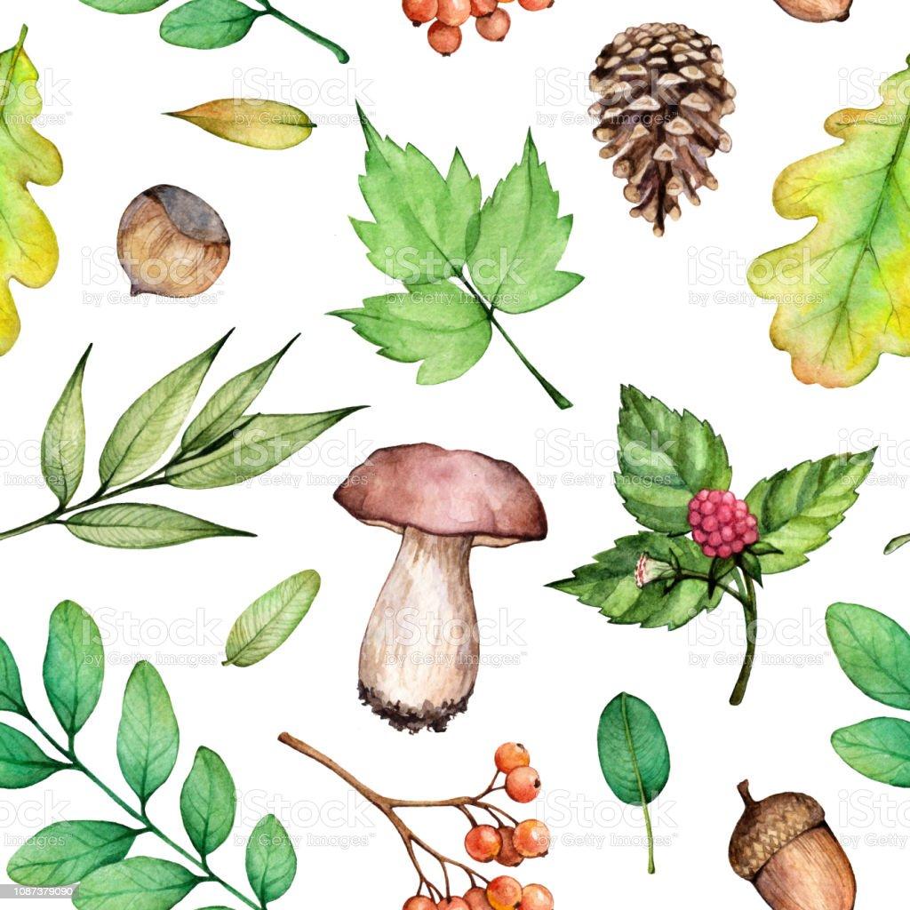Sulu Boya Dikissiz Desen Orman Hayat Illustrasyon Findik Mantar