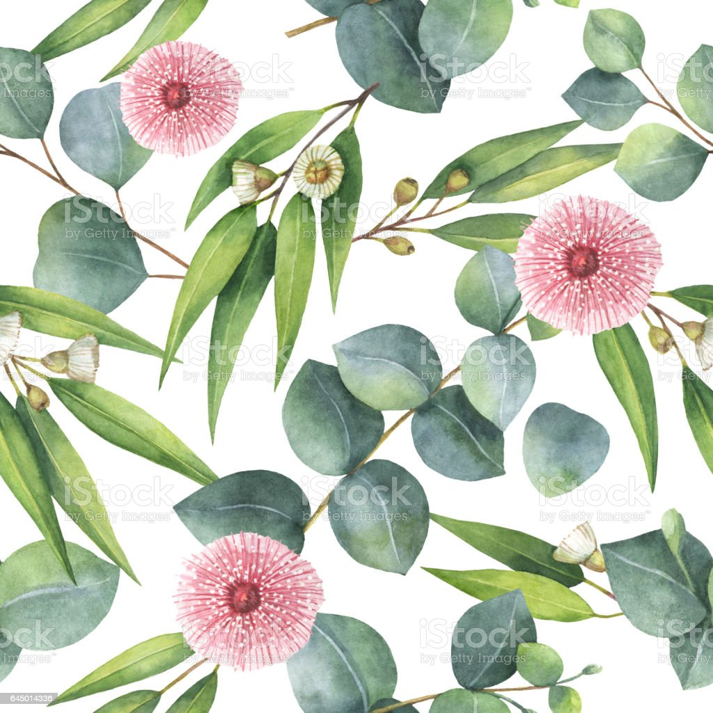 Watercolor seamless pattern with eucalyptus leaves and branches. vector art illustration