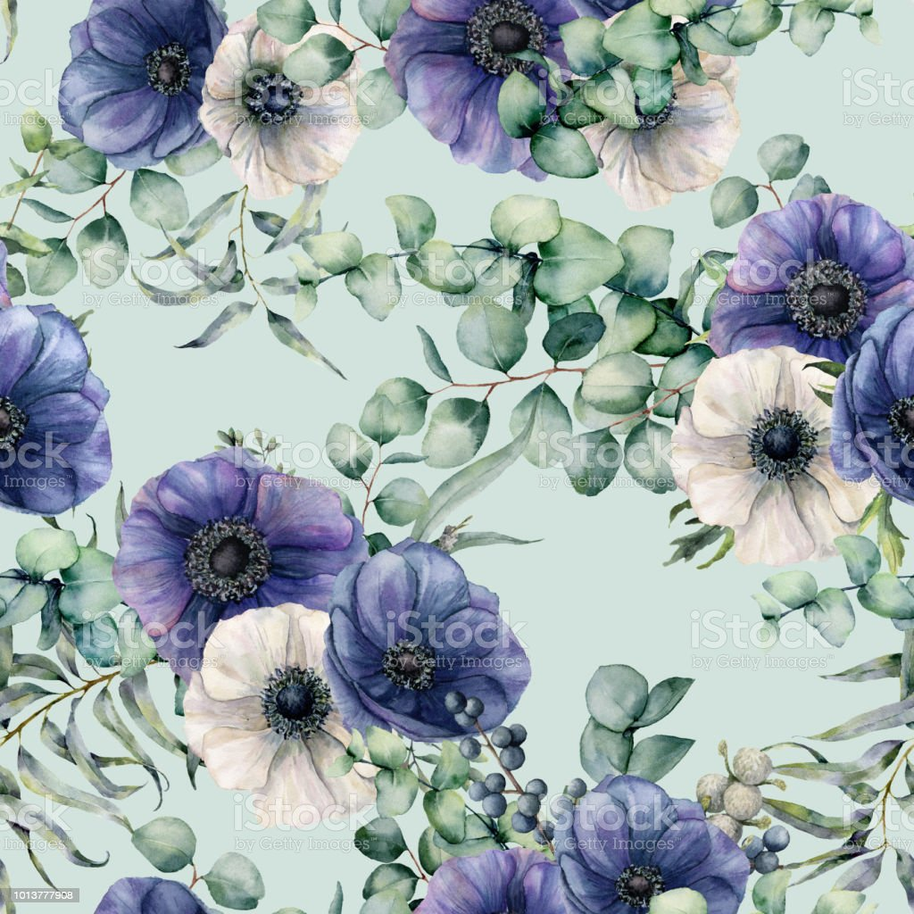 7adbbc4cf6d3 Aquarela sem costura padrão com folhas de eucalipto, anêmona azul e branca.  Mão pintadas