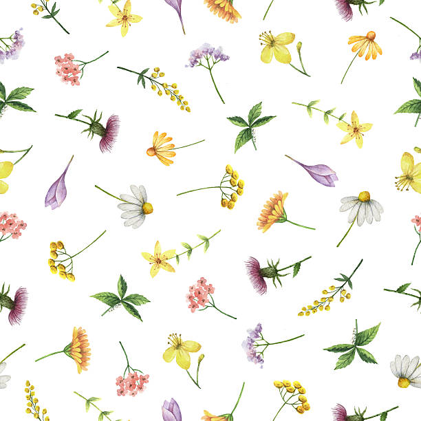 watercolor seamless pattern with medical herbs and plants. - 薬草点のイラスト素材/クリップアート素材/マンガ素材/アイコン素材