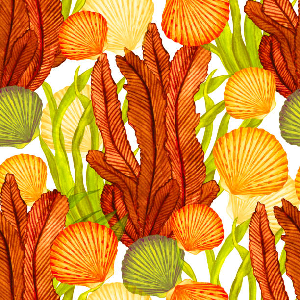watercolor seamless pattern with scallop sea shells, seaweed - fossilized leaves stock illustrations