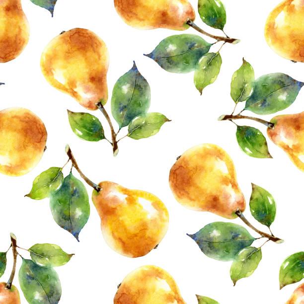 illustrazioni stock, clip art, cartoni animati e icone di tendenza di watercolor seamless pattern with yellow pears - mika