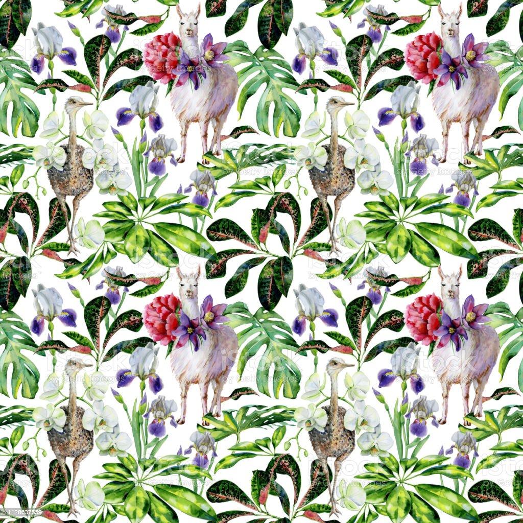 Aquarela sem costura padrão tropical de lhama alpaca, avestruz e dos desenhos animados - ilustração de arte em vetor