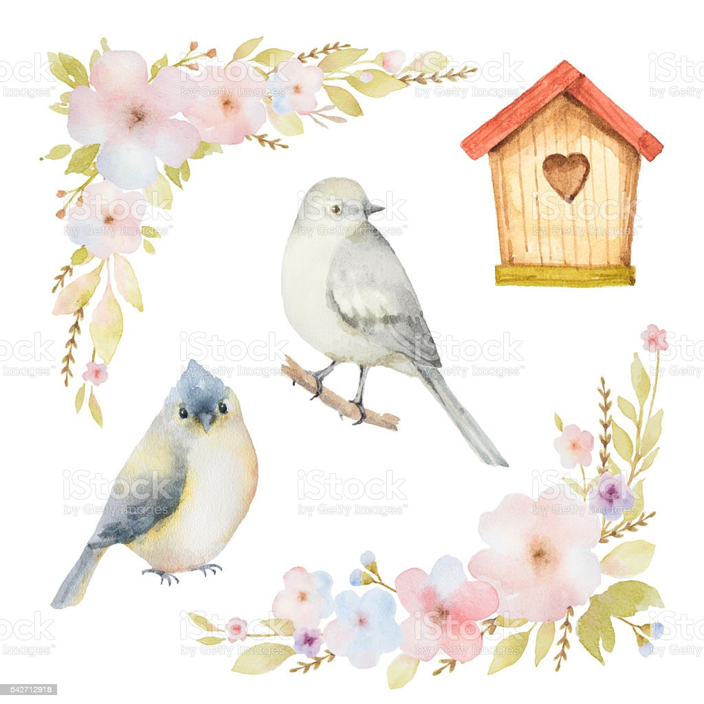 Watercolor set of birds, flowers and birdhouses. vector art illustration