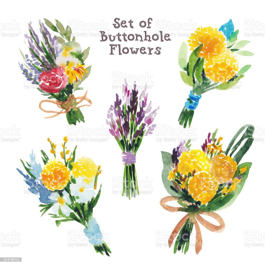 Watercolor set of buttonhole bouquets, boutonnieres, summer flowers vector art illustration