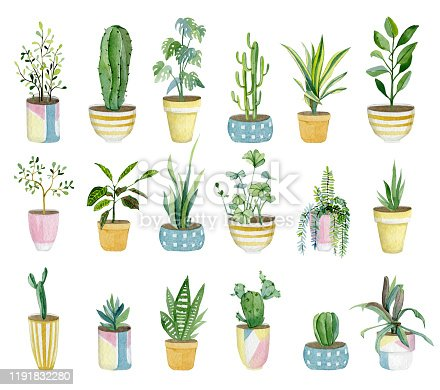 istock Watercolor set of home plants in flower pots. Hand drawn watercolor for banner, print, home or garden decoration. 1191832280