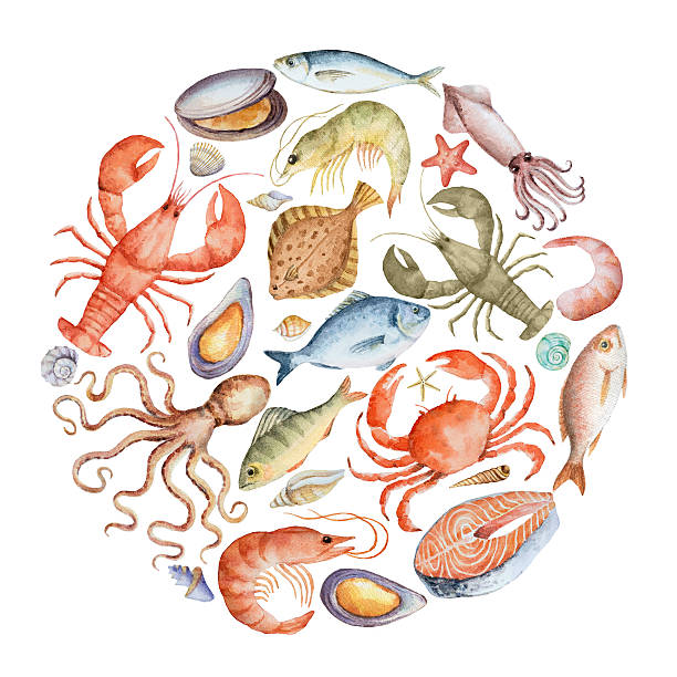 Watercolor set of seafood. vector art illustration