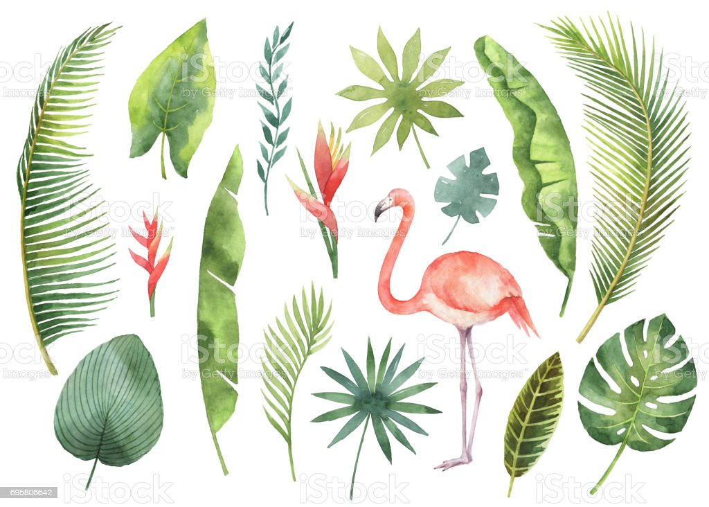 Watercolor set tropical leaves and branches isolated on white background. royalty-free watercolor set tropical leaves and branches isolated on white background stock illustration - download image now