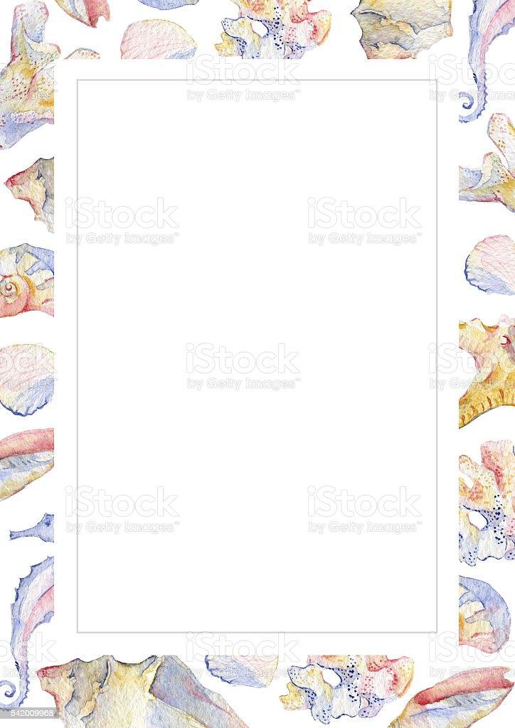 Conchiglia acquerello gruppo di conchiglie corallo e for Immagini coralli marini