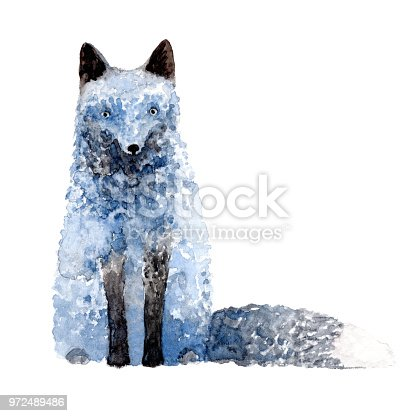 Watercolor silver fox isolated on white background.