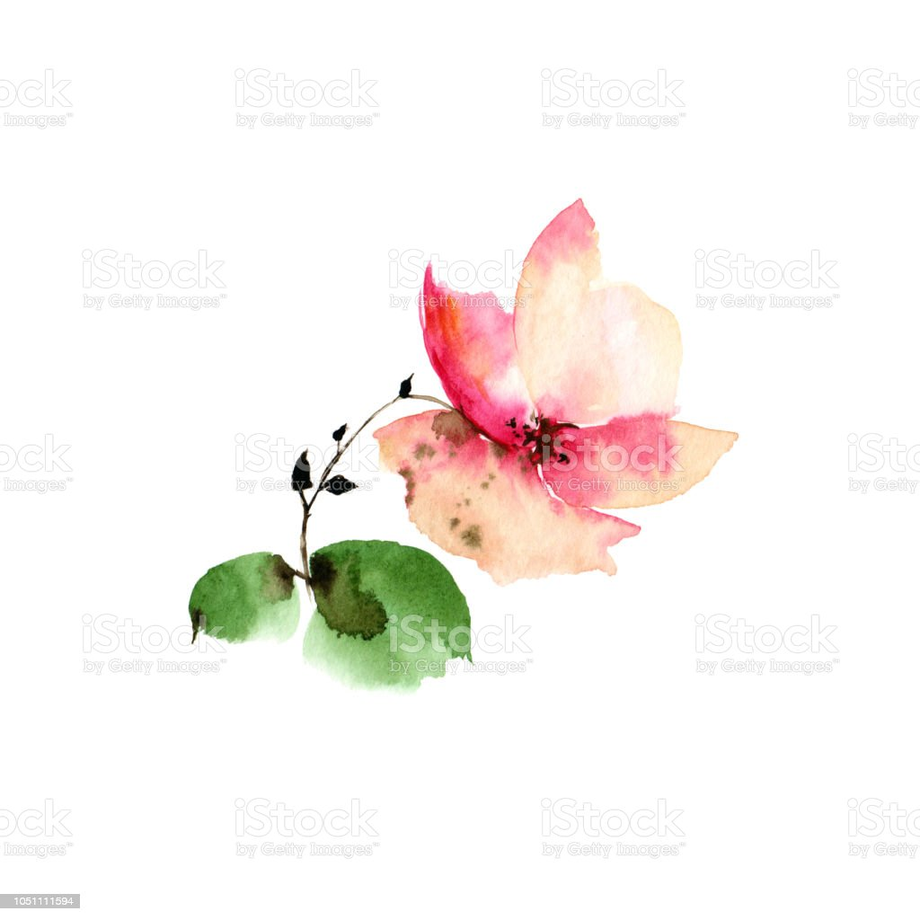 Watercolor Single Flower Autumn Greeting Card Pink Flower For