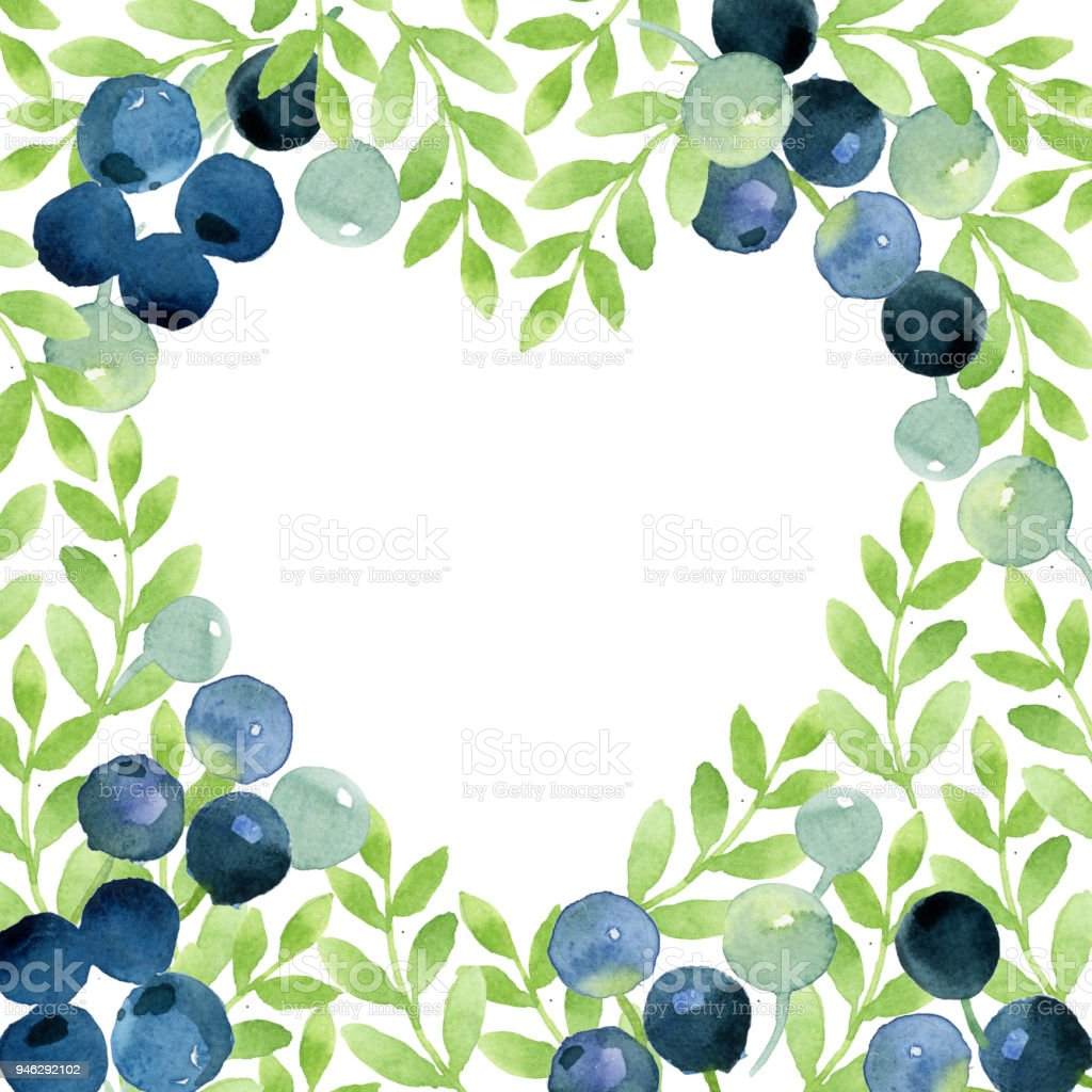 Watercolor Sketch Of Leaves And Berries Blank For Text Or For ...