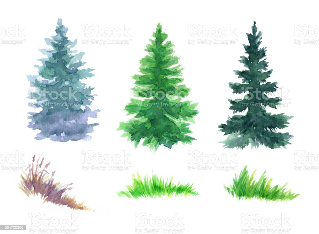 Watercolor Snowy Forest Illustration Christmas Fir Trees