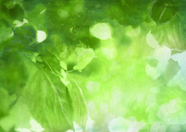 Watercolor spring foliage vector art illustration