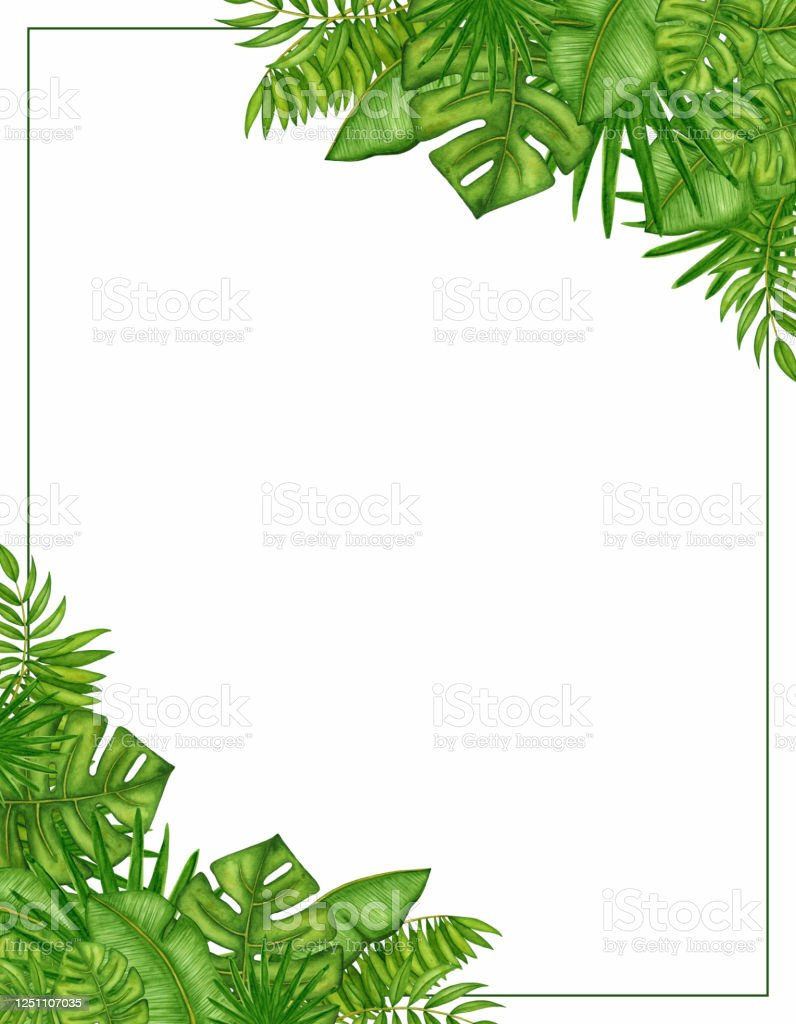 watercolor square nature frame with green tropical leaves hand drawn palm branches template copy space for text stock illustration download image now istock watercolor square nature frame with green tropical leaves hand drawn palm branches template copy space for text stock illustration download image now istock