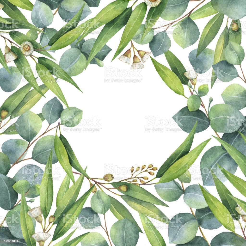 watercolor square wreath with green eucalyptus leaves and branches