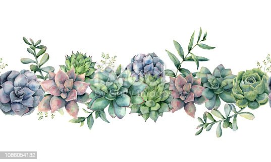 istock Watercolor succulents seamless bouquet. Hand painted green, violet, pink cacti, eucalyptus leaves and branches isolated on white background.  Botanical illustration for design, print. Green plants 1086054132