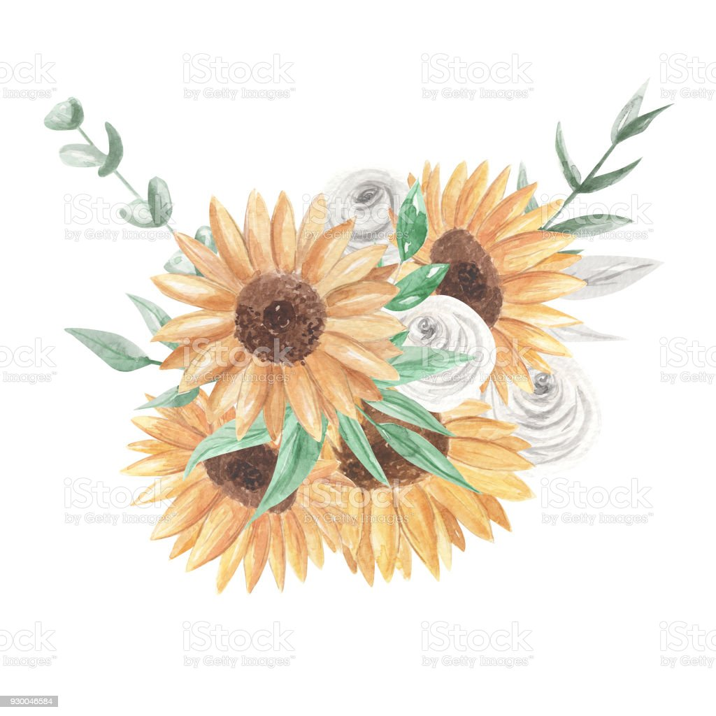 Watercolor Sunflower Bouquets Clipart Flowers White Roses Stock ...
