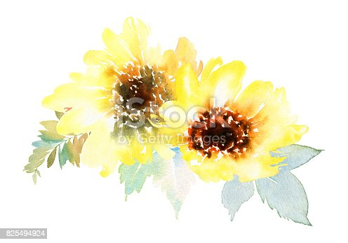 Watercolor sunflowers. Postcard for the wedding, birthday party. Summer. Autumn. Gentle warm colors.
